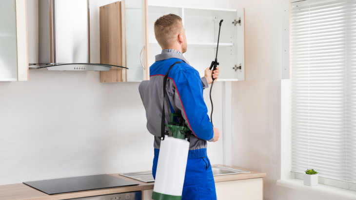 Benefits of hiring a professional pest control service