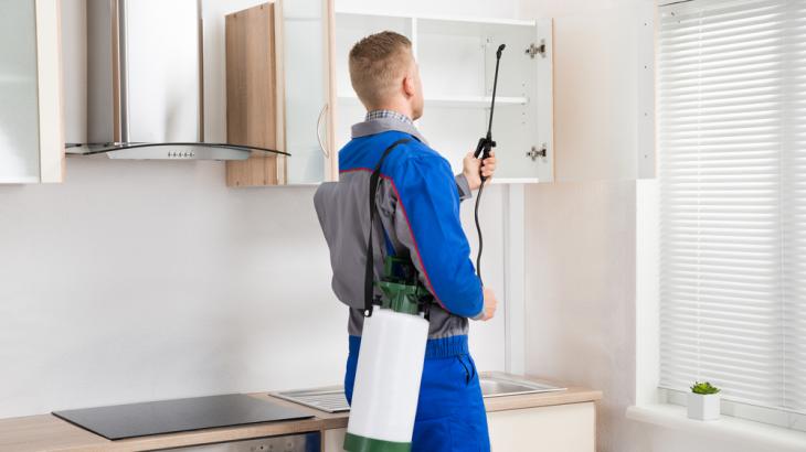 Benefits of hiring a professional pest control service